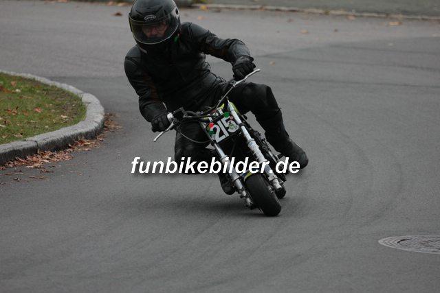 Präsentationslauf Reinsdorf 2015 Bild_0264