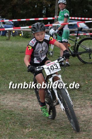 Alpina Cup Bayreuth 2015_0007