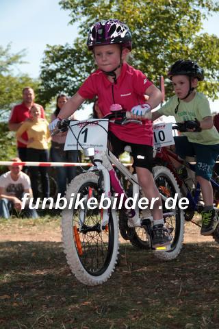 Alpina Cup Bayreuth 2015_0195
