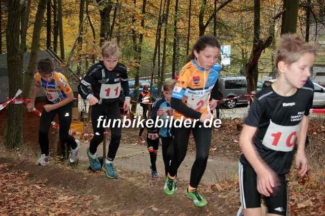 Radcross Gelenau 2018_Bild_0007