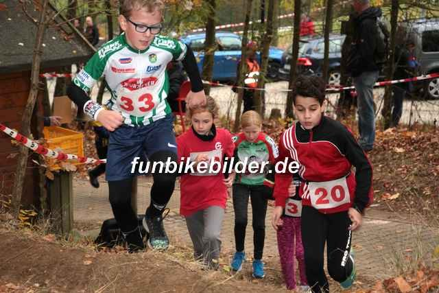 Radcross Gelenau 2018_Bild_0009