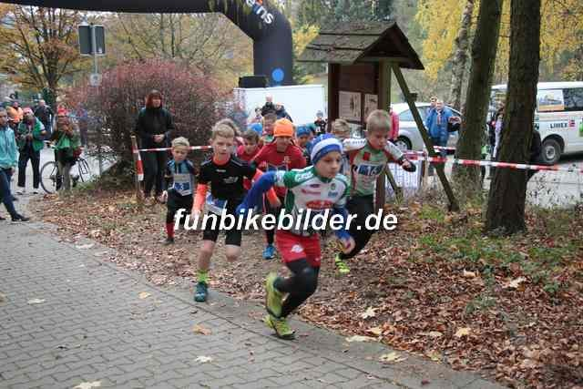 Radcross Gelenau 2018_Bild_0032