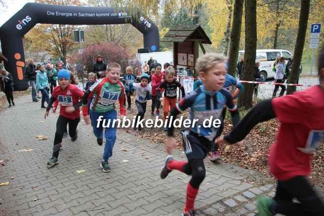 Radcross Gelenau 2018_Bild_0033