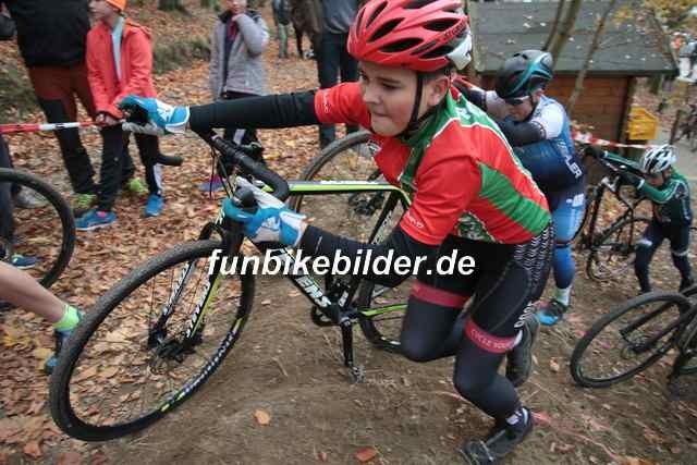 Radcross Gelenau 2018_Bild_0057