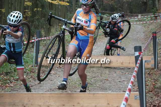 Radcross Gelenau 2018_Bild_0067