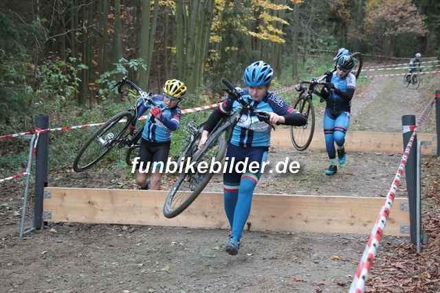 Radcross Gelenau 2018_Bild_0077