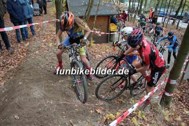 Radcross Gelenau 2018_Bild_0103