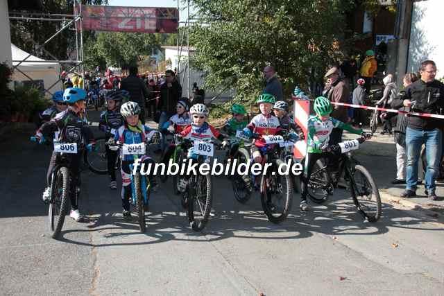 Alpina Cup Gottersdorf 2015_0275
