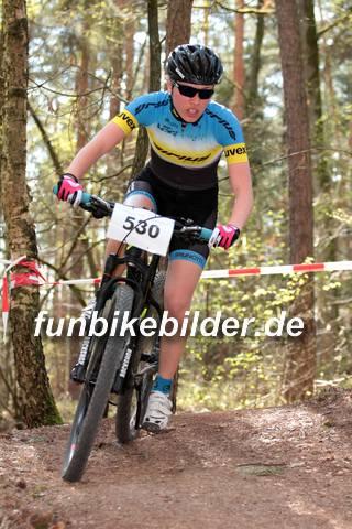CC Race Bayernliga Schneckenlohe 2015_0170.jpg