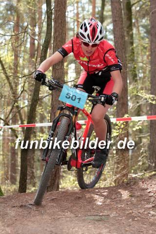 CC Race Bayernliga Schneckenlohe 2015_0173.jpg