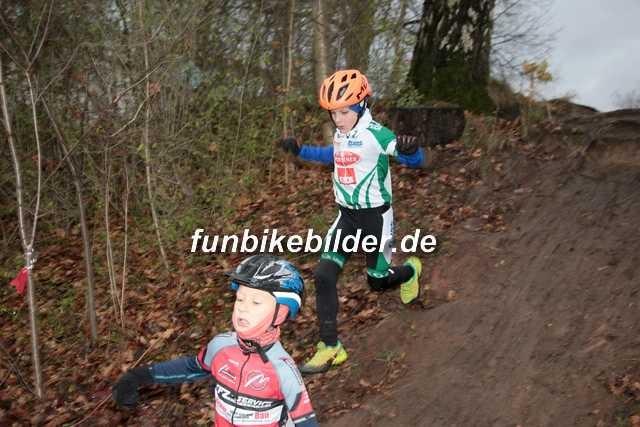 Radcross Chemnitz Bild__0002