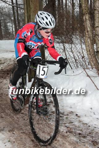 Silvester Radcross Lichtenstein 2014_0104
