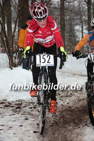 Silvester Radcross Lichtenstein 2014_0107