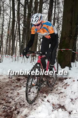 Silvester Radcross Lichtenstein 2014_0115