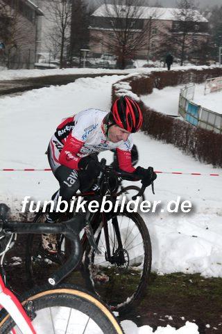 Silvester Radcross Lichtenstein 2014_0214