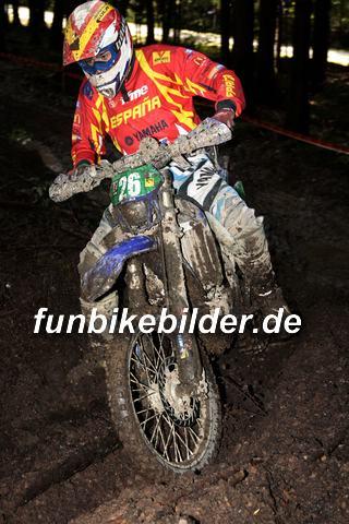 ISDE 2012 Deutschland Day 3 Enduro Test Boernichen_0070