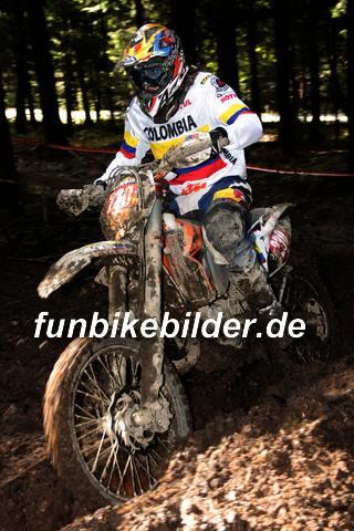 ISDE 2012 Deutschland Day 3 Enduro Test Boernichen_0105