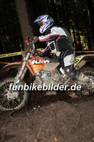 ISDE 2012 Deutschland Day 3 Enduro Test Boernichen_0347