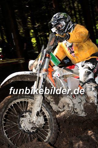 ISDE 2012 Deutschland Day 3 Enduro Test Boernichen_0349