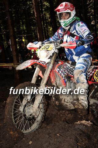 ISDE 2012 Deutschland Day 3 Enduro Test Boernichen_0353