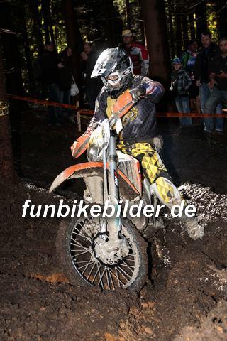 ISDE 2012 Deutschland Day 3 Enduro Test Boernichen_0354