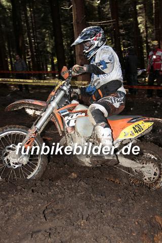 ISDE 2012 Deutschland Day 3 Enduro Test Boernichen_0356