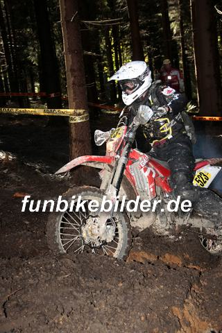 ISDE 2012 Deutschland Day 3 Enduro Test Boernichen_0358