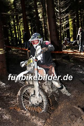 ISDE 2012 Deutschland Day 3 Enduro Test Boernichen_0360