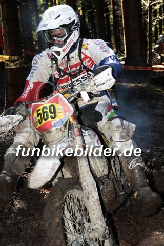 ISDE 2012 Deutschland Day 3 Enduro Test Boernichen_0361