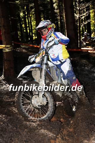 ISDE 2012 Deutschland Day 3 Enduro Test Boernichen_0362