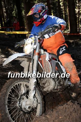 ISDE 2012 Deutschland Day 3 Enduro Test Boernichen_0363
