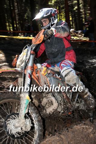 ISDE 2012 Deutschland Day 3 Enduro Test Boernichen_0366