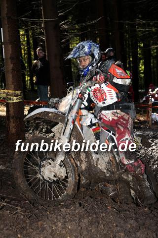 ISDE 2012 Deutschland Day 3 Enduro Test Boernichen_0376