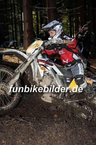 ISDE 2012 Deutschland Day 3 Enduro Test Boernichen_0377