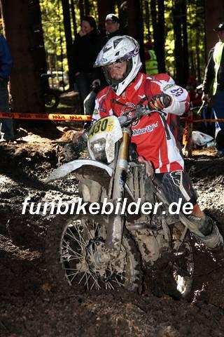 ISDE 2012 Deutschland Day 3 Enduro Test Boernichen_0378