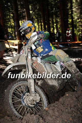 ISDE 2012 Deutschland Day 3 Enduro Test Boernichen_0388