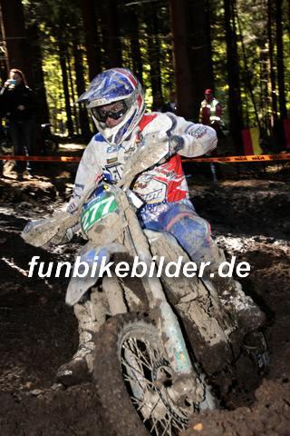 ISDE 2012 Deutschland Day 3 Enduro Test Boernichen_0389