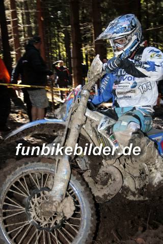 ISDE 2012 Deutschland Day 3 Enduro Test Boernichen_0394
