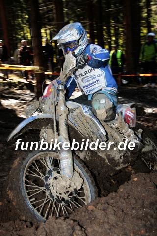 ISDE 2012 Deutschland Day 3 Enduro Test Boernichen_0397