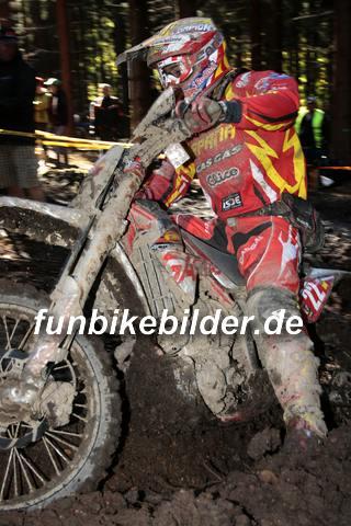 ISDE 2012 Deutschland Day 3 Enduro Test Boernichen_0398