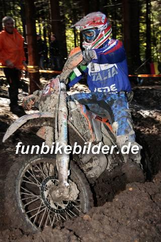 ISDE 2012 Deutschland Day 3 Enduro Test Boernichen_0399