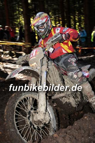 ISDE 2012 Deutschland Day 3 Enduro Test Boernichen_0409