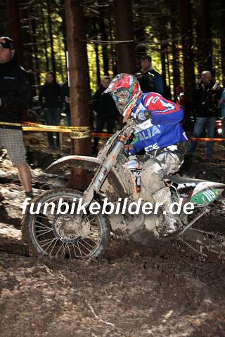 ISDE 2012 Deutschland Day 3 Enduro Test Boernichen_0414