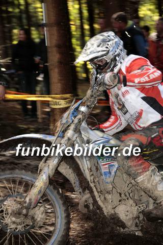 ISDE 2012 Deutschland Day 3 Enduro Test Boernichen_0422