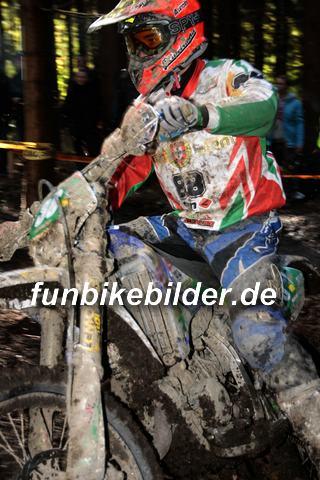ISDE 2012 Deutschland Day 3 Enduro Test Boernichen_0424