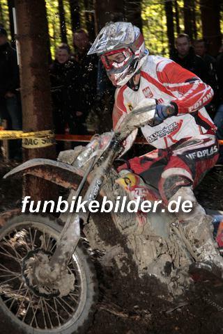 ISDE 2012 Deutschland Day 3 Enduro Test Boernichen_0428