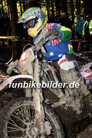 ISDE 2012 Deutschland Day 3 Enduro Test Boernichen_0430
