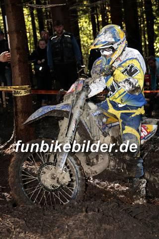 ISDE 2012 Deutschland Day 3 Enduro Test Boernichen_0431