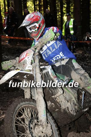 ISDE 2012 Deutschland Day 3 Enduro Test Boernichen_0435