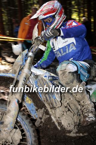 ISDE 2012 Deutschland Day 3 Enduro Test Boernichen_0437